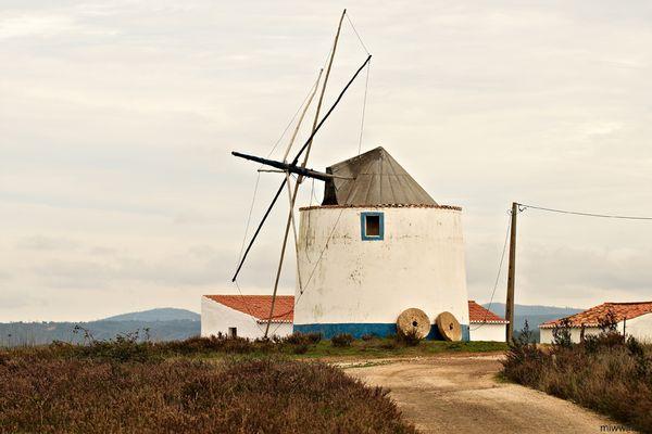 windmill_31289_600x450
