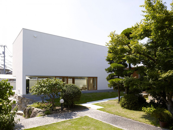 house-integrating-trees