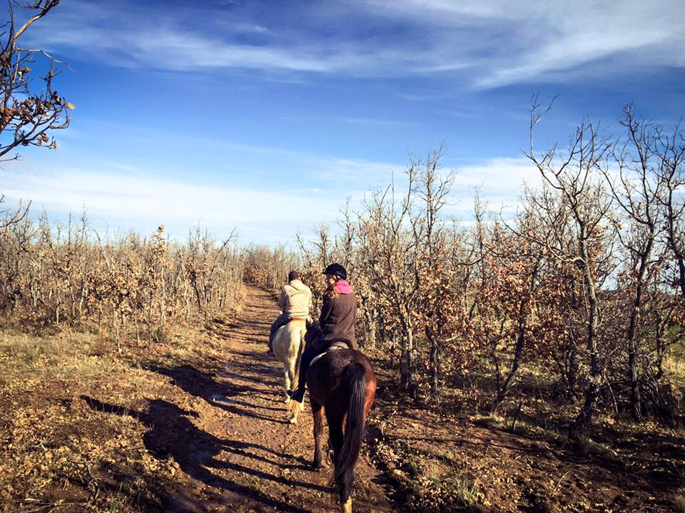 Montar a caballo La Vereda Segovia
