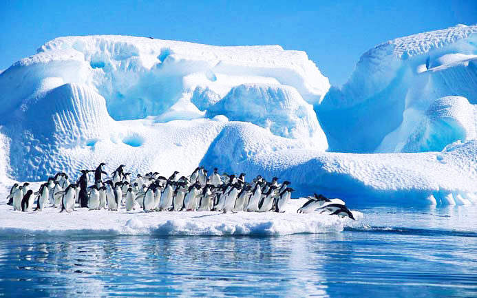 Antartida Los 10 viajes que debes hacer alguna vez en tu vida