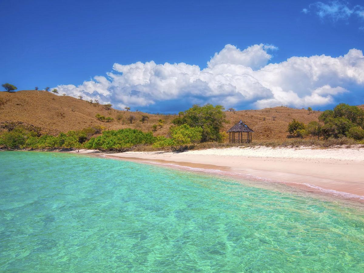 pink-beaches-komodo-beach-TC
